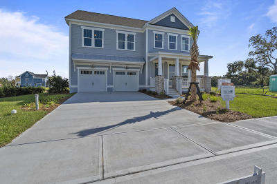 James Island Single Family Home For Sale: 1167 Elliotts Cut Drive