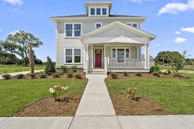 James Island Single Family Home For Sale: 1238 Captain Rivers Drive