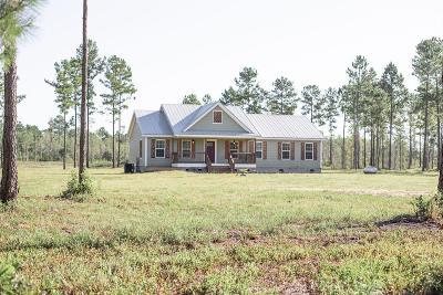 Walterboro Single Family Home For Sale: 1520 Cane Branch Road