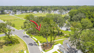 Johns Island Single Family Home Contingent: 2170 Saint Johns Woods Parkway