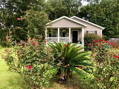 Mount Pleasant Single Family Home For Sale: 2969 Bobo Road