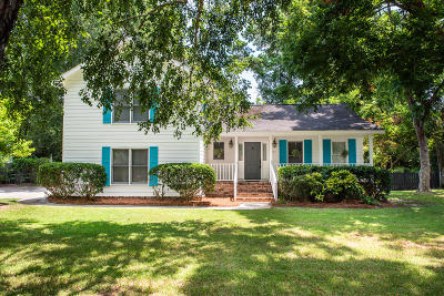 Mount Pleasant Single Family Home For Sale: 774 Chatter Road