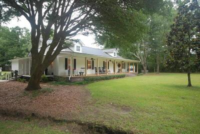 Moncks Corner Single Family Home For Sale: 228 Nicole Lane