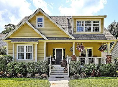 Charleston Single Family Home For Sale: 237 N Ainsdale Drive