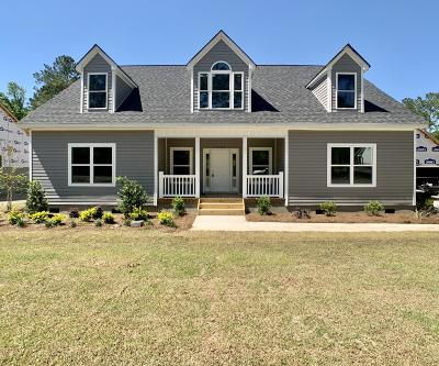 Summerville Single Family Home For Sale: 1137 Orangeburg Road