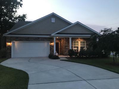 Johns Island Single Family Home For Sale: 3364 Pavilion Lake Drive