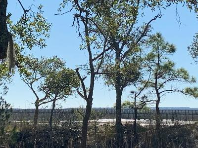 Awendaw Residential Lots & Land For Sale: 4177 Longmarsh Road