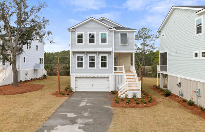 Charleston Single Family Home For Sale: 852 Forrest Drive