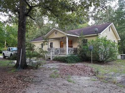 Single Family Home For Sale: 131 Minerva Drive