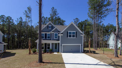 Single Family Home For Sale: 410 Bowstring Drive