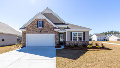 Single Family Home For Sale: 2707 Sunrose Lane