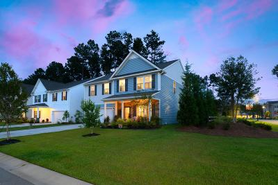 Summerville Single Family Home Contingent: 301 Dunlin Drive