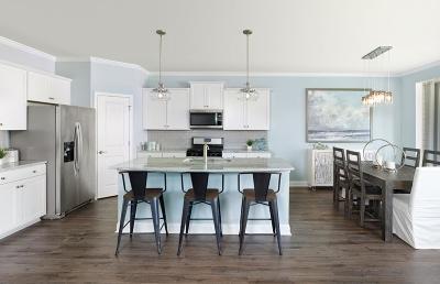 Summerville Single Family Home For Sale: 492 Sanctuary Park Drive
