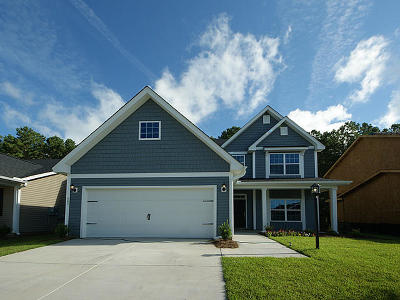Summerville SC Single Family Home For Sale: $311,868