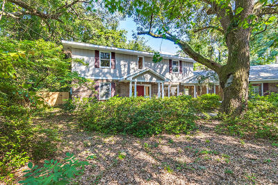 Summerville Single Family Home For Sale: 311 W Carolina Ave