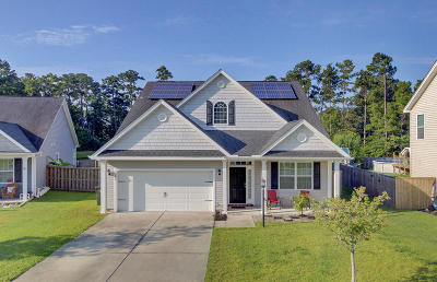 Ladson Single Family Home For Sale: 236 Withers Lane