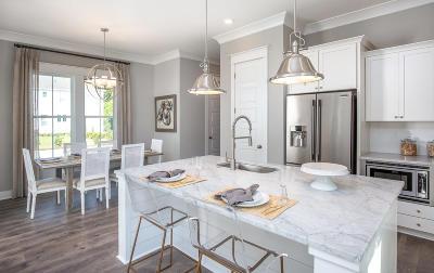 Single Family Home For Sale: 49 Wilson Creek Lane