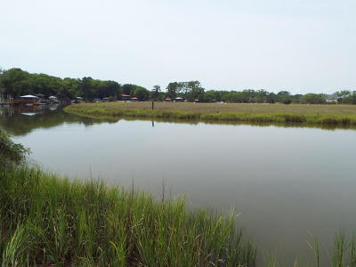Edisto Island SC Residential Lots & Land For Sale: $300,000