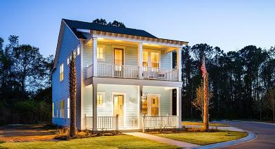 Single Family Home For Sale: 70 Wilson Creek Lane