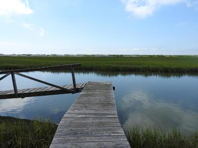 Edisto Beach, Edisto Island Residential Lots & Land For Sale: 24 Hammocks Way
