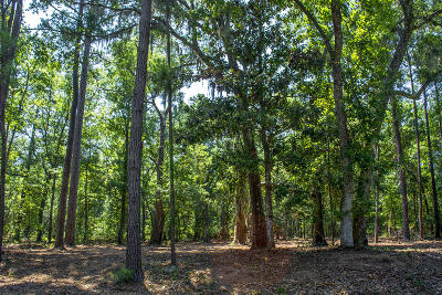 Edisto Island SC Residential Lots & Land Contingent: $105,000