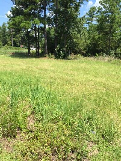 Awendaw Residential Lots & Land For Sale: 6445 N Hwy 17