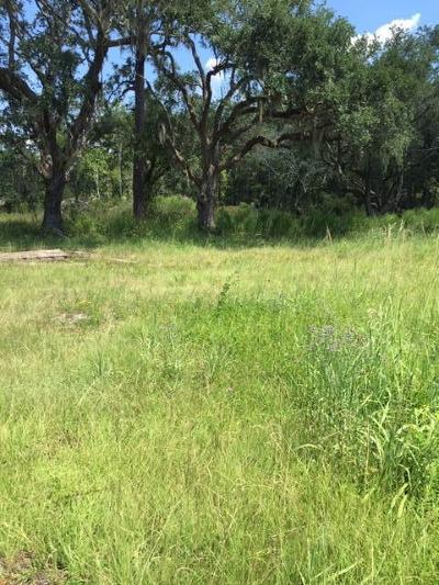 Awendaw Residential Lots & Land For Sale: 7250 N Hwy 17