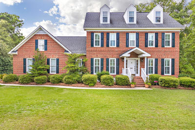 Single Family Home For Sale: 241 Waterford Parkway