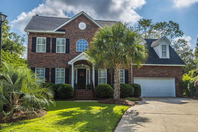 Mount Pleasant Single Family Home For Sale: 590 Heron Pointe Boulevard