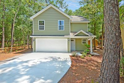 Johns Island Single Family Home For Sale: 1821 Zelasko Drive