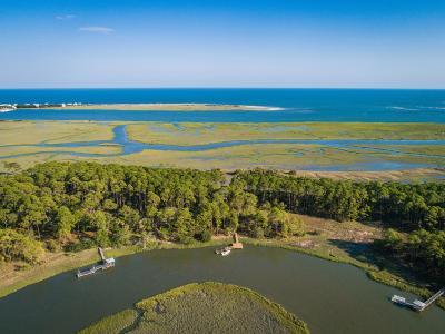 Charleston County Single Family Home For Sale: 2 Cusabo Island