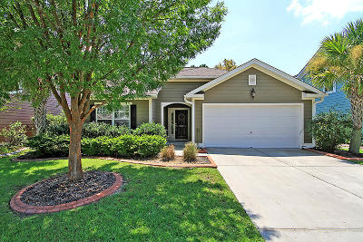 Single Family Home For Sale: 319 Cypress Walk Way