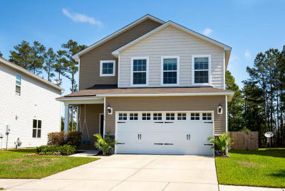 Summerville Single Family Home For Sale: 124 Brookhaven Road