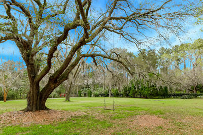 Johns Island Single Family Home For Sale: 1017 River Road