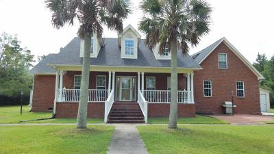 Awendaw Single Family Home For Sale: 1231 Alston Dingle Road