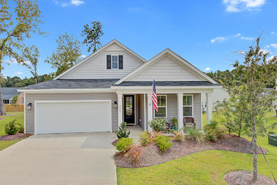 Summerville Single Family Home For Sale: 108 Bethpaige Court