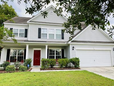 Summerville Single Family Home For Sale: 9607 River Ridge Drive