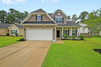 Summerville Single Family Home For Sale: 228 Alpine Road