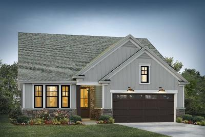 Moncks Corner Single Family Home For Sale: 253 Whirlaway Drive