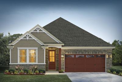 Moncks Corner Single Family Home For Sale: 251 Whirlaway Drive