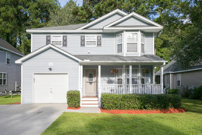 Charleston Single Family Home For Sale: 378 Stefan Drive