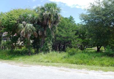 Edisto Beach, Edisto Island Residential Lots & Land For Sale: 1407 Dorothy Street