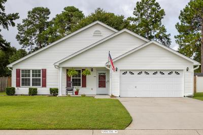 Ladson Single Family Home For Sale: 9878 Levenshall Drive