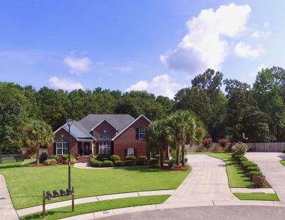 Goose Creek Single Family Home For Sale: 115 Keighley Drive