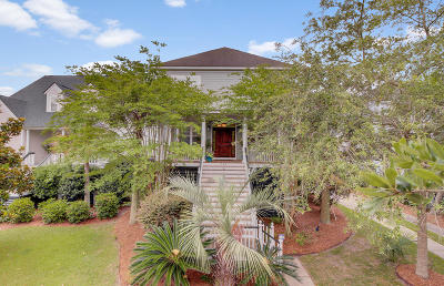 Charleston Single Family Home For Sale: 306 S Ladd Court