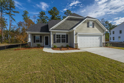 Summerville Single Family Home For Sale: 317 Saxony Loop