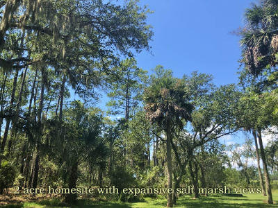 Edisto Island SC Residential Lots & Land For Sale: $134,900