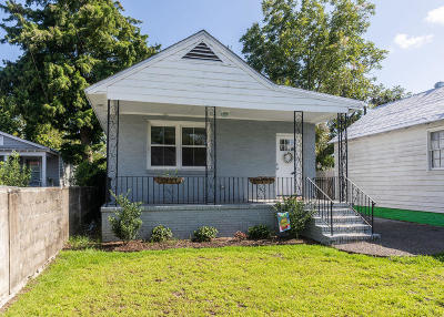 Charleston Single Family Home For Sale: 87 Romney Street