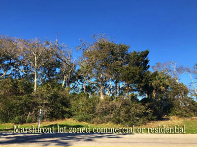 Edisto Beach, Edisto Island Residential Lots & Land For Sale: 113 Jungle Road