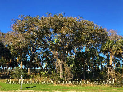 Edisto Beach, Edisto Island Residential Lots & Land For Sale: 117 Jungle Road